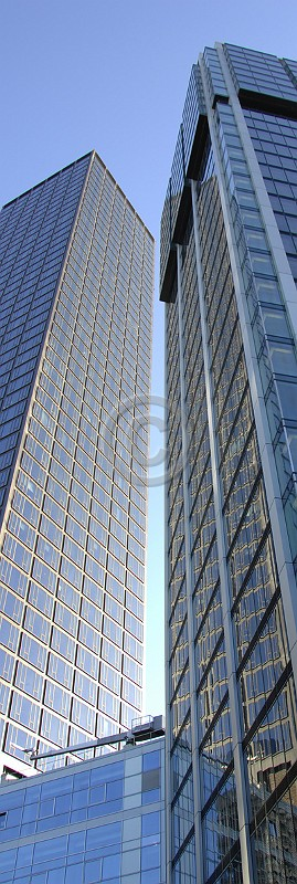 Skyline Frankfurt im Hochformat 29