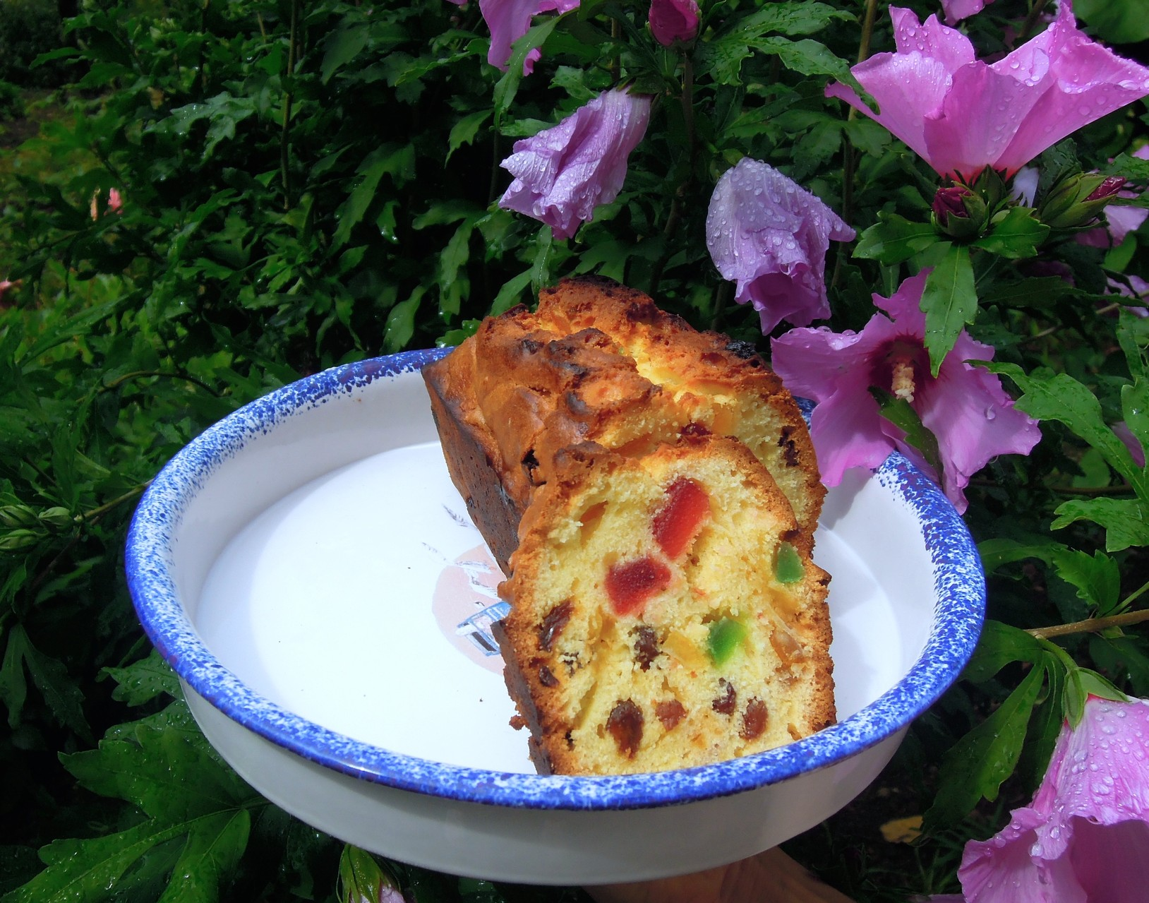 Cake with raisins and candied fruits