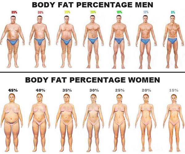 % masse grasse