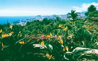 Madeira - Vulkaninseln im Atlantik Vortrag, Diashow