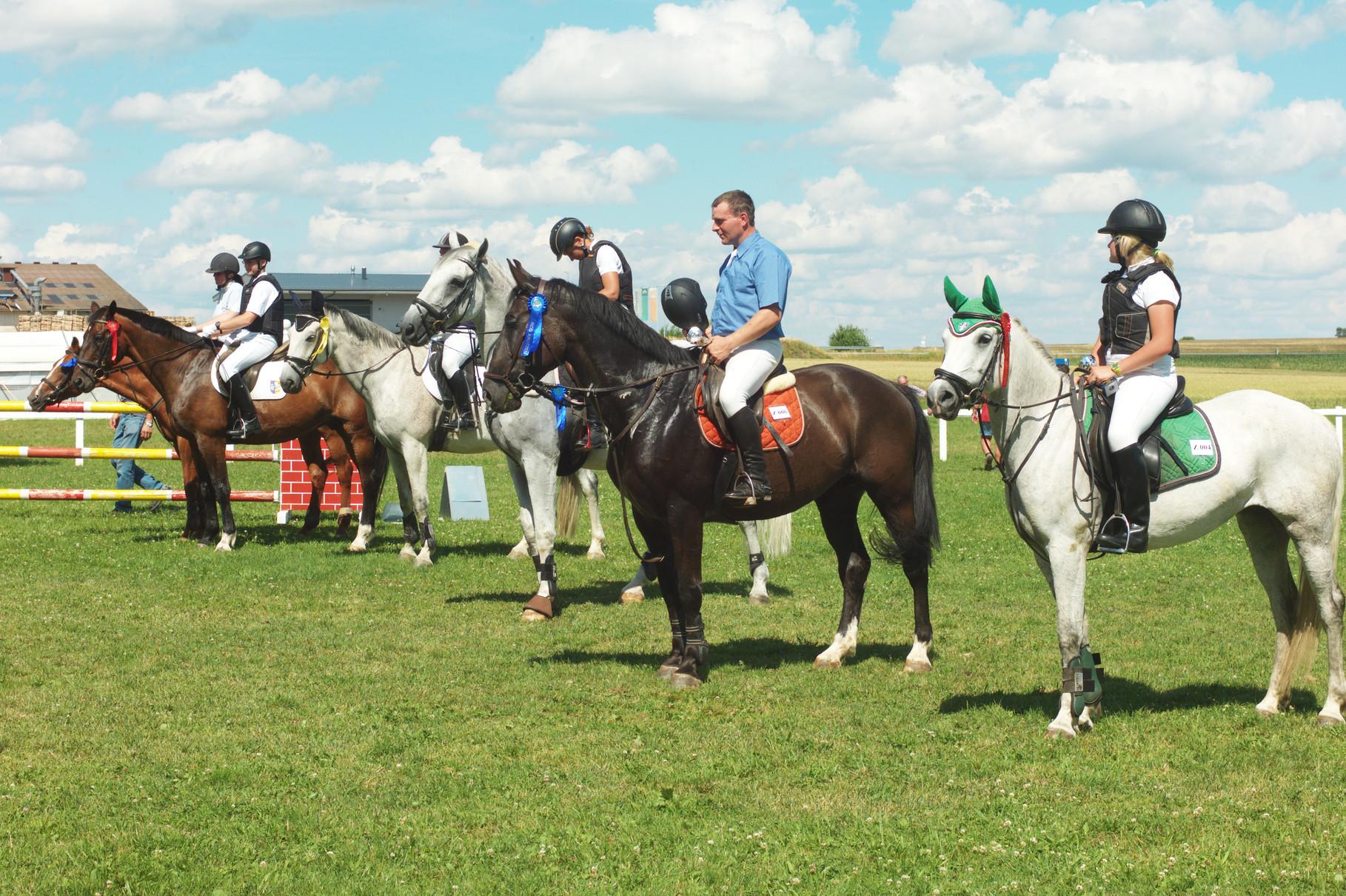 Zufriedene Pferde und Reiter