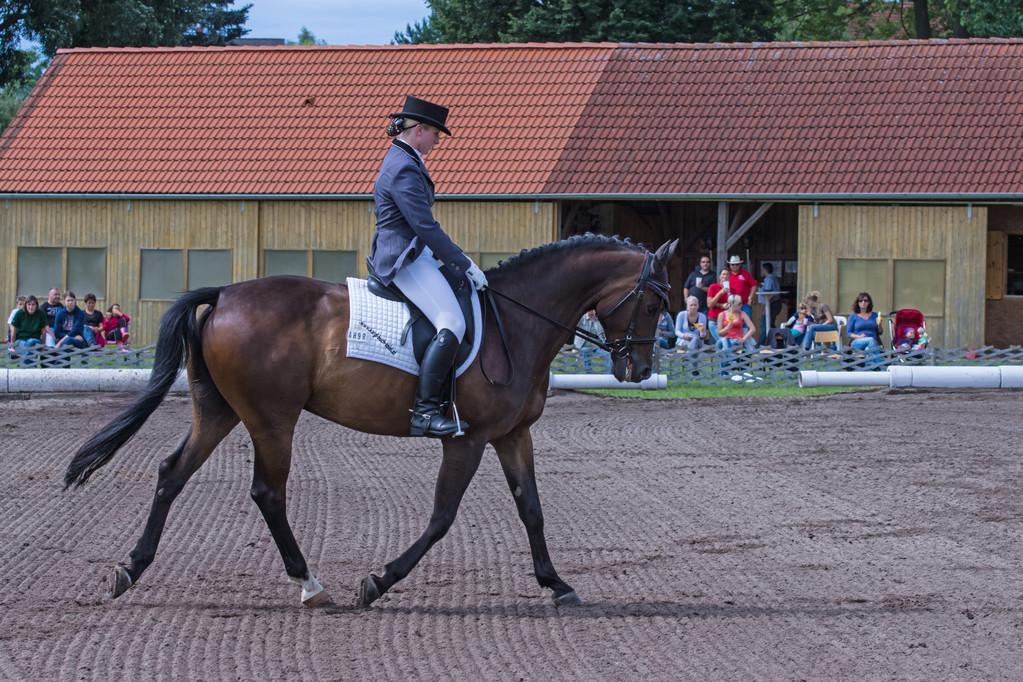 Stefanie Schwameis auf Avalon im Dressurbewerb Kl. L - Waldviertel-Cup