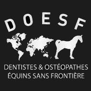 Association de dentistes et ostéopathes équins qui agissent en international