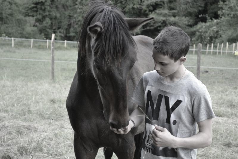 Be Amor, adopté par Simon en 2013 (A rejoint les étoiles en 2013)