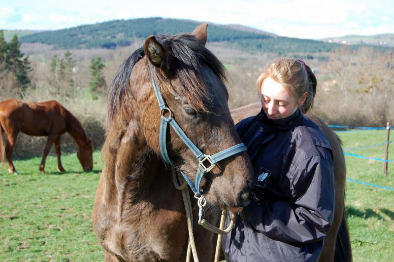 Ulan, adopté par Elodie en 2010