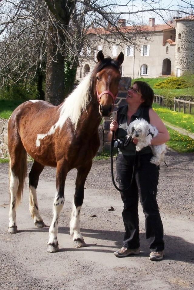 Shérif, adopté par Anne en 2008