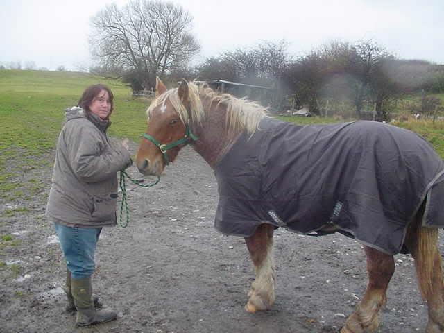 Shreck, adopté par Debbie au Royaume Uni en 2007