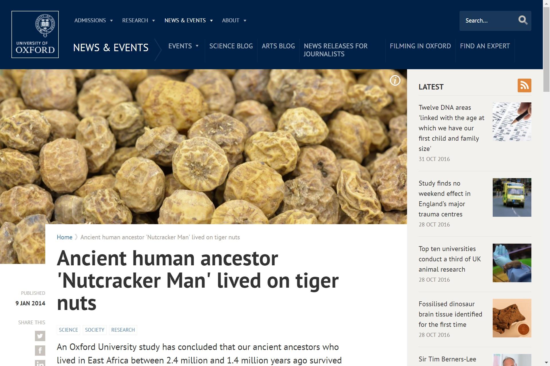 Ancient human ancestor 'Nutcracker Man lived on tiger nuts