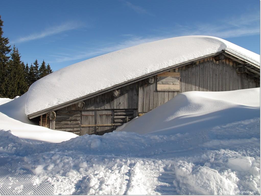 Eingeschneite Alphütte in der Chüematte.