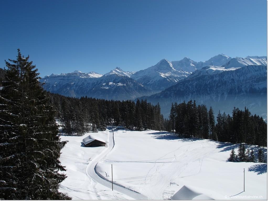 Mit wunderbarer Aussicht hinunter auf die verschneiten Wiesen...