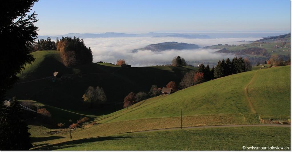 Goldiwil, Blick Richtung Steffisburg (im Nebel)