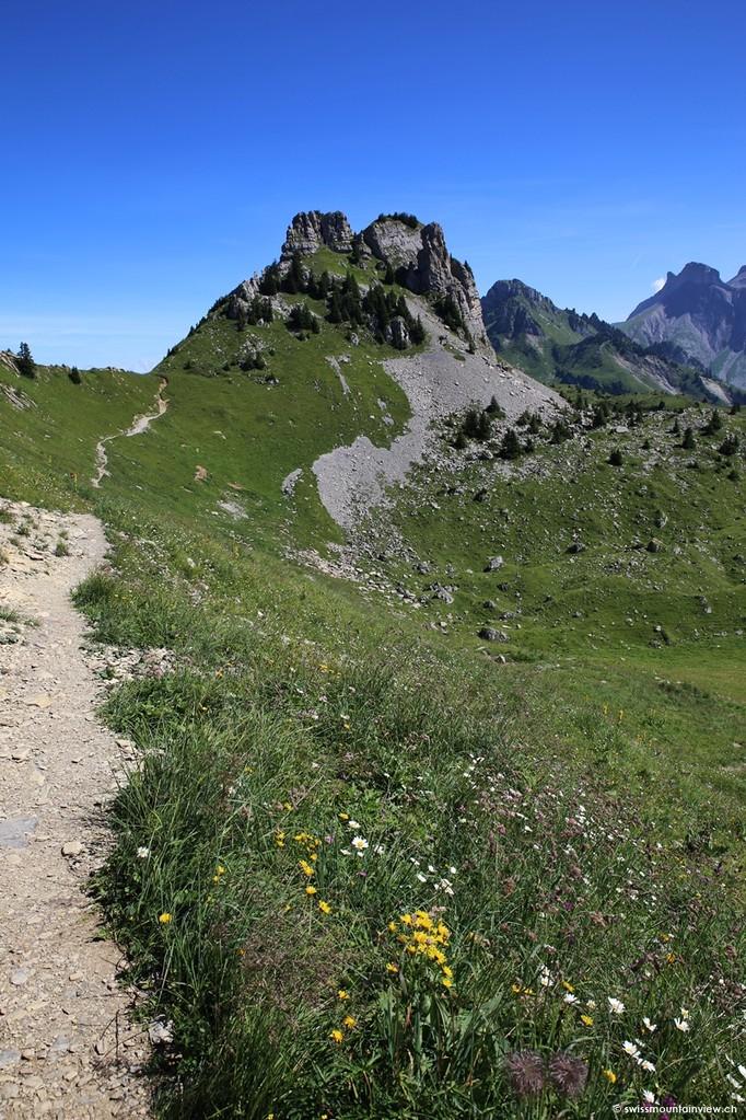 vorbei am Alpengarten geht es dann der Bergflanke entlang zur Krete.