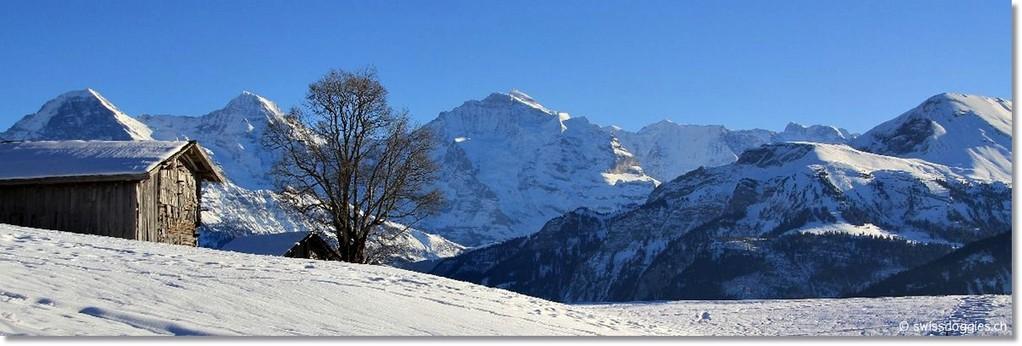 Beatenberg-Waldegg