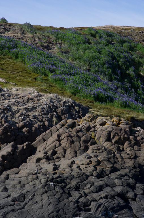 Ilots au Nord de la péninsule de Snaefellsnes