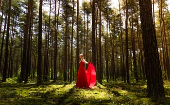 Dein Outdoor Fotograf für Bilder wie im Märchen