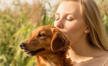 Fotoshooting mit Haustier