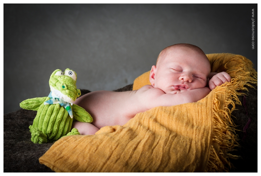 Photo de bébé avec peluche crocodile