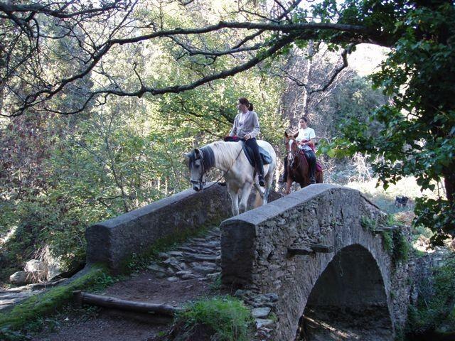 Pont génois à cheval