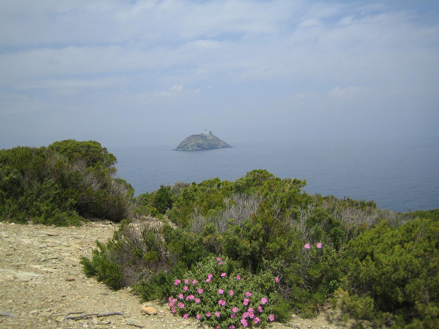 Sentier des Douaniers, Cap Corse