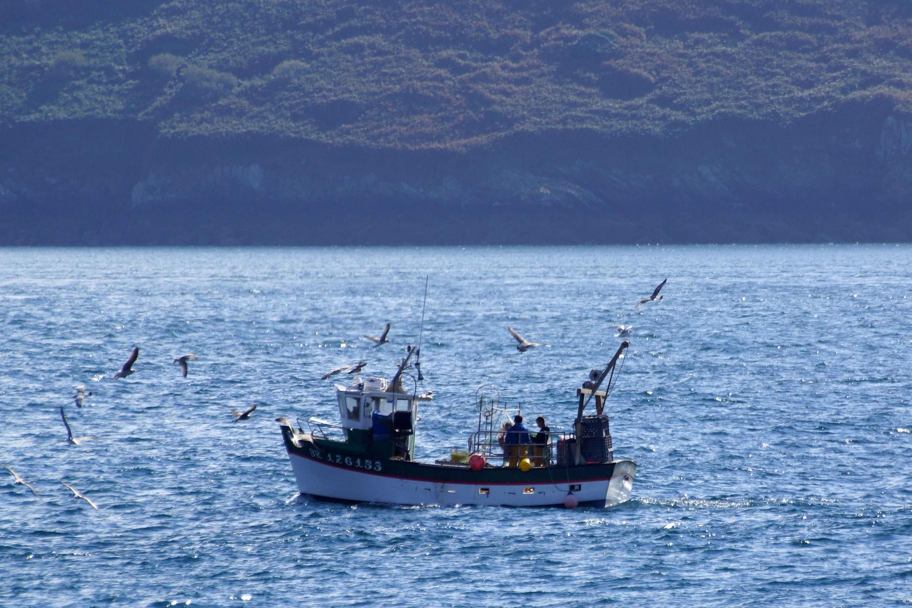 Pêcheurs au travail
