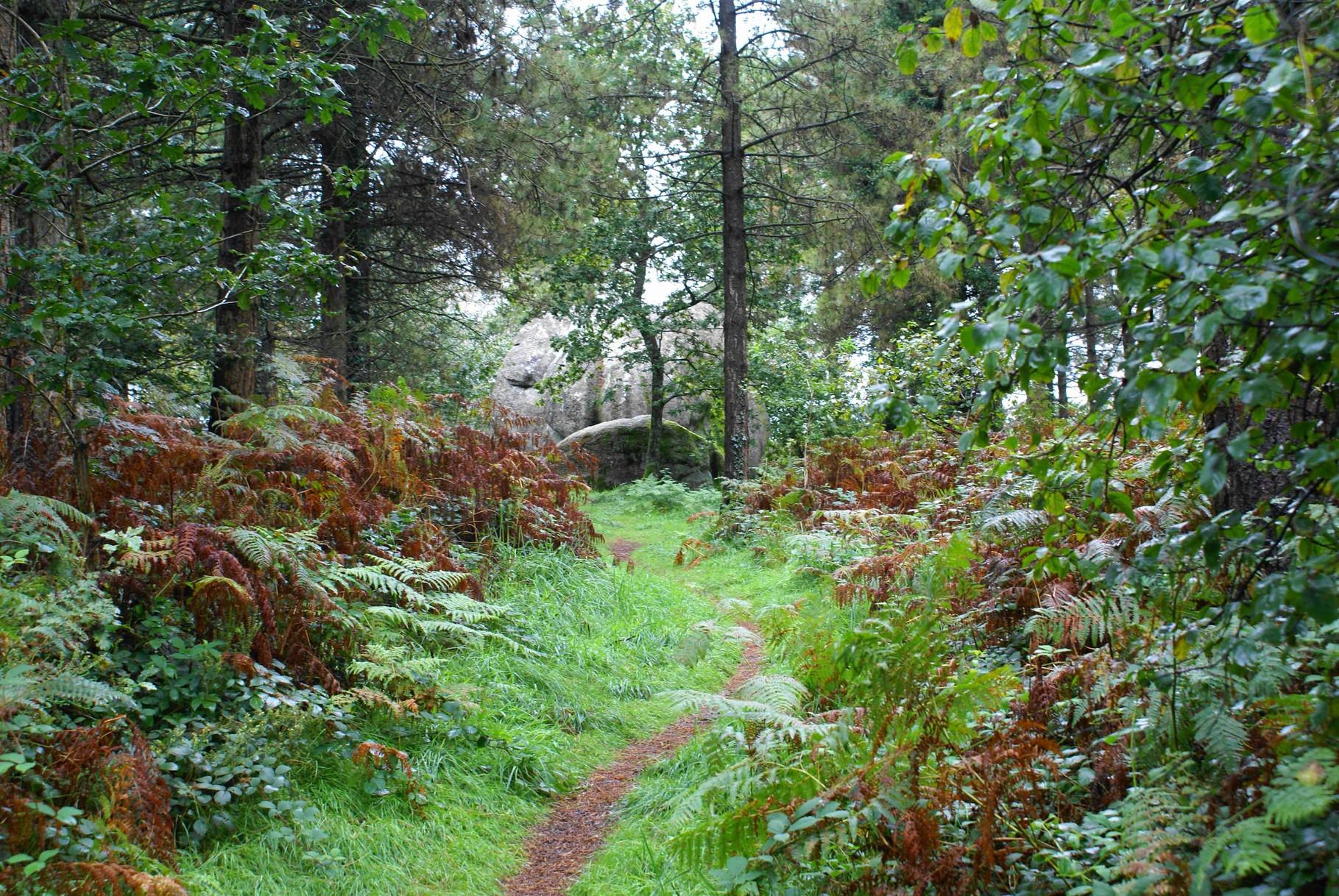 Chemin de Saint Kirio