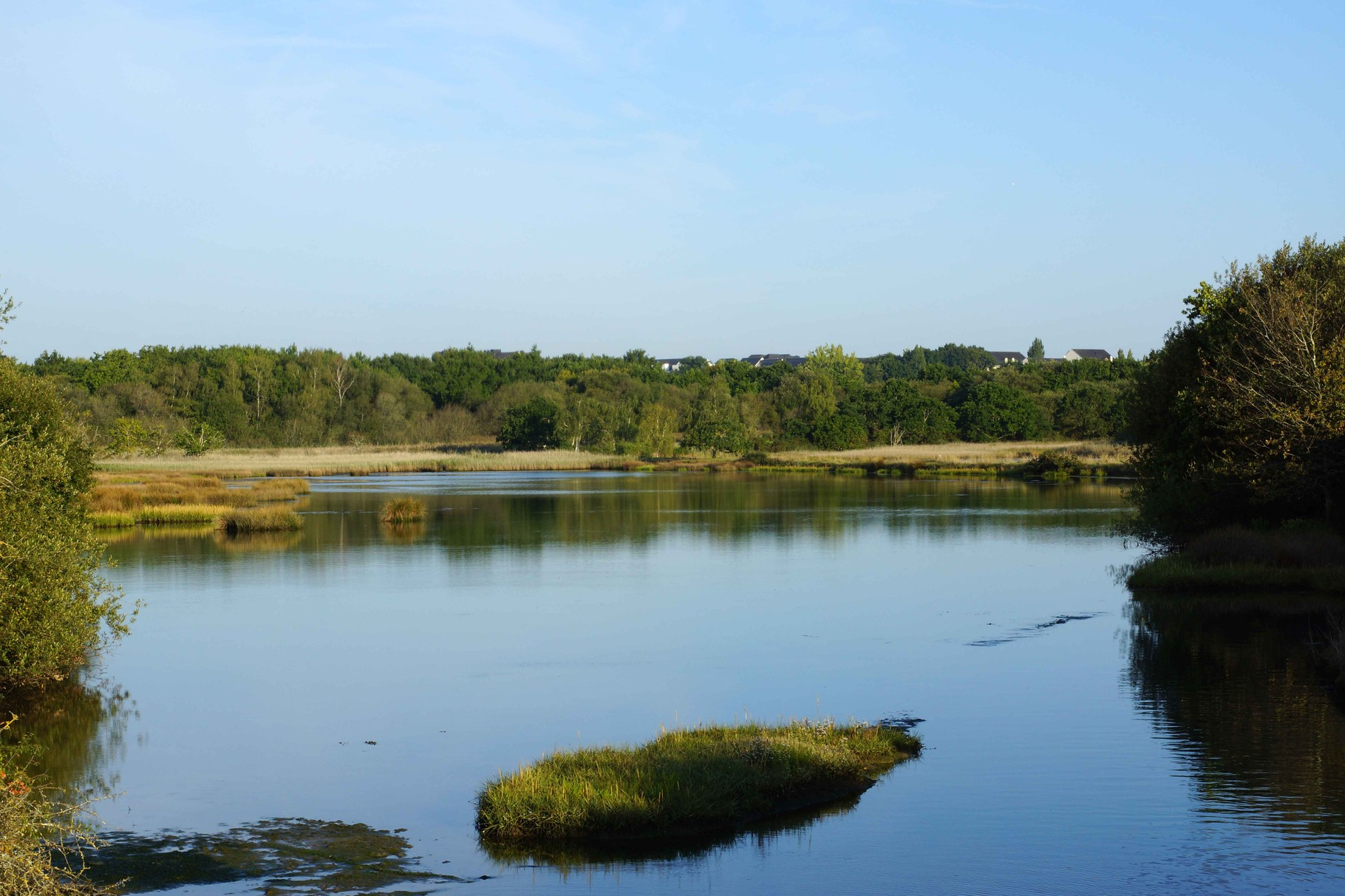 Marais de Conleau