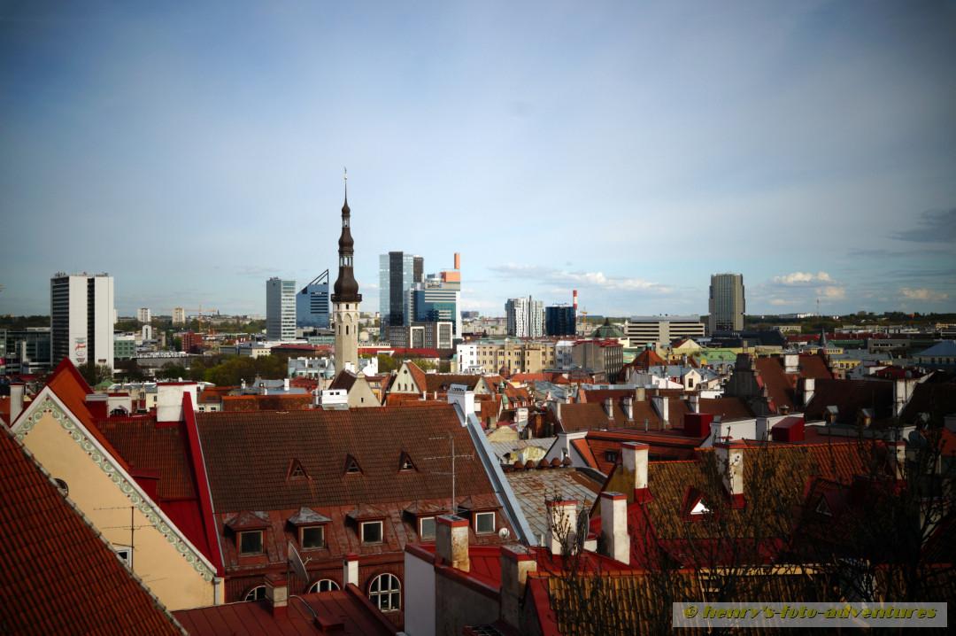 Blick auf die untere Altstadt und die Neustadt