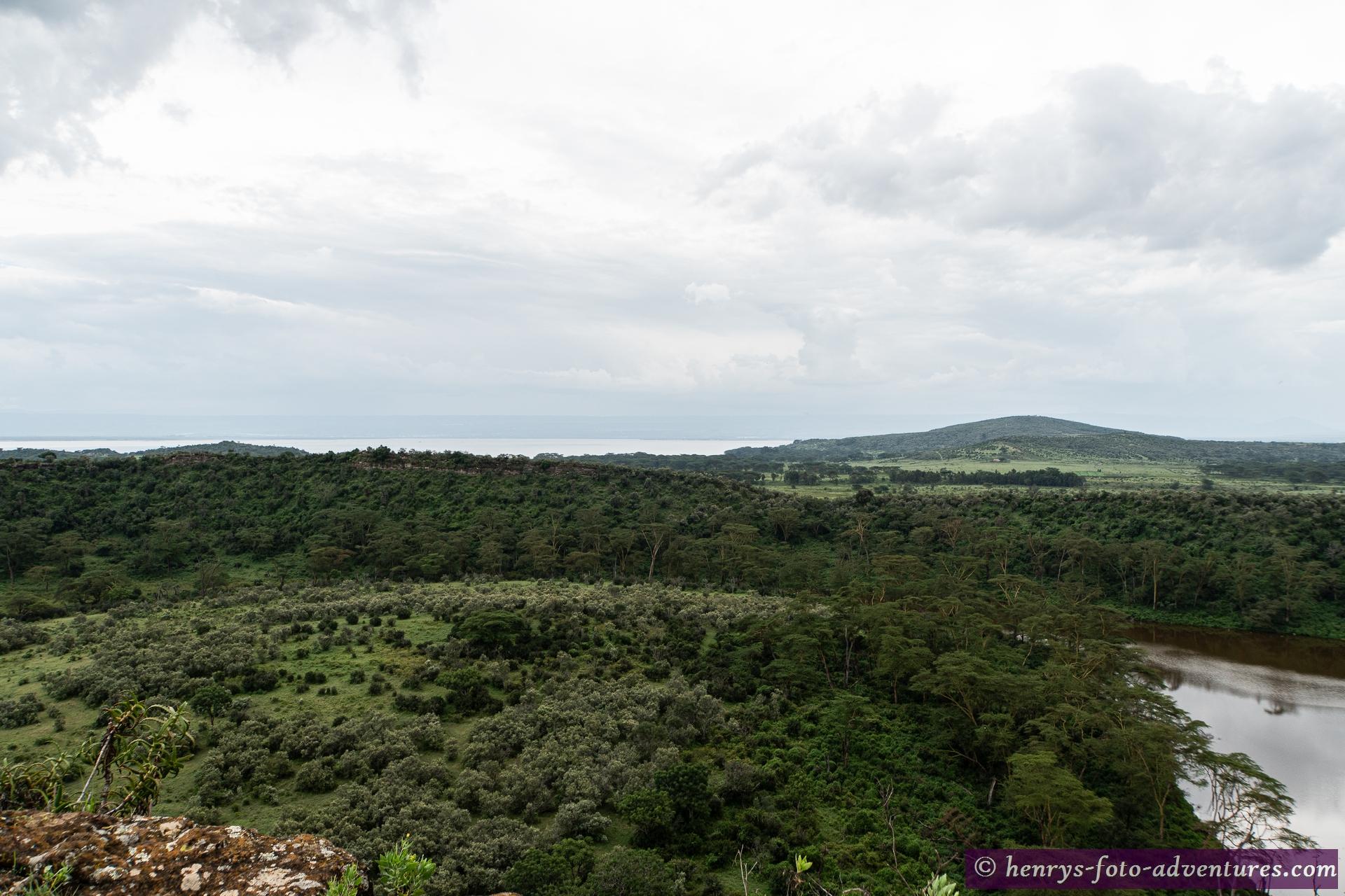 im Hintergrund der Naiwashasee
