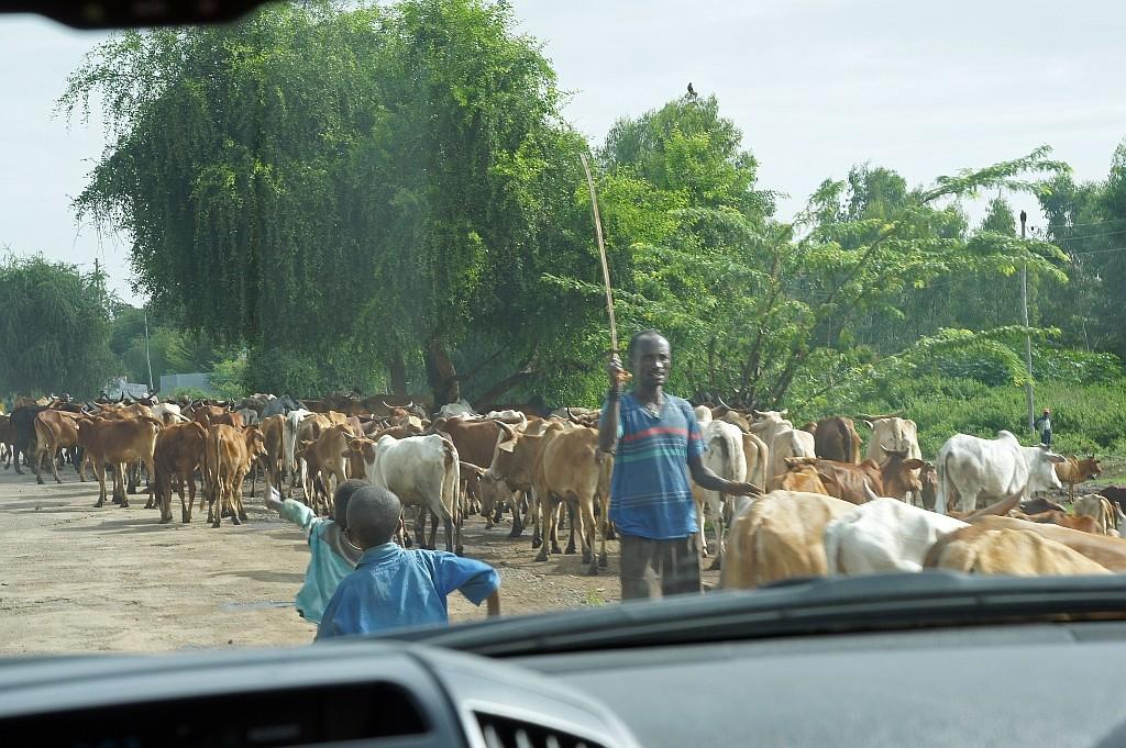 rush hour auf äthiopisch