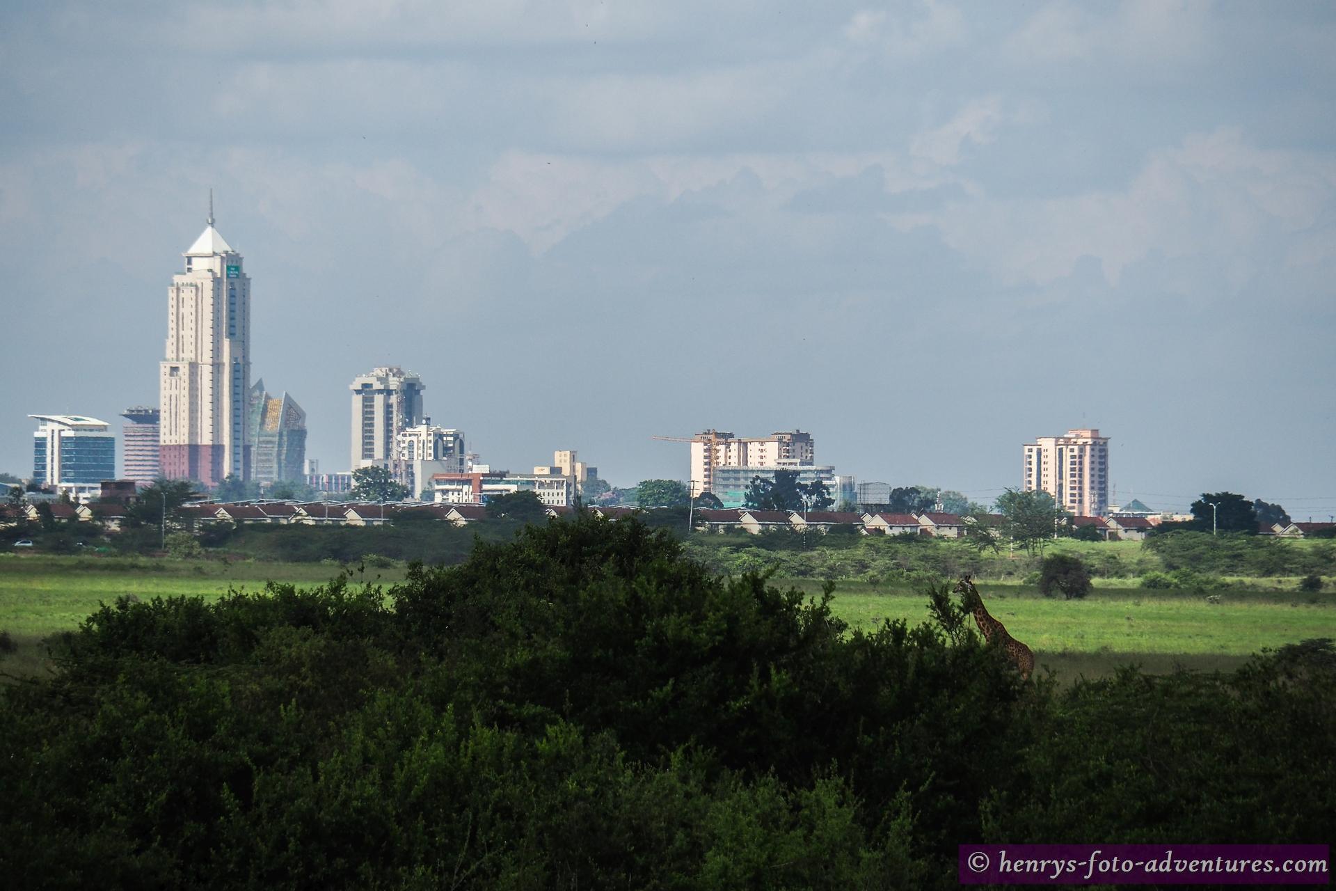 vor der Sky Line von Nairobi
