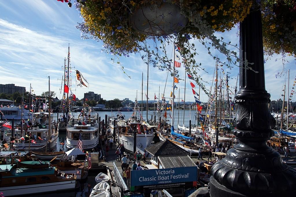 Boots Festival im Hafen