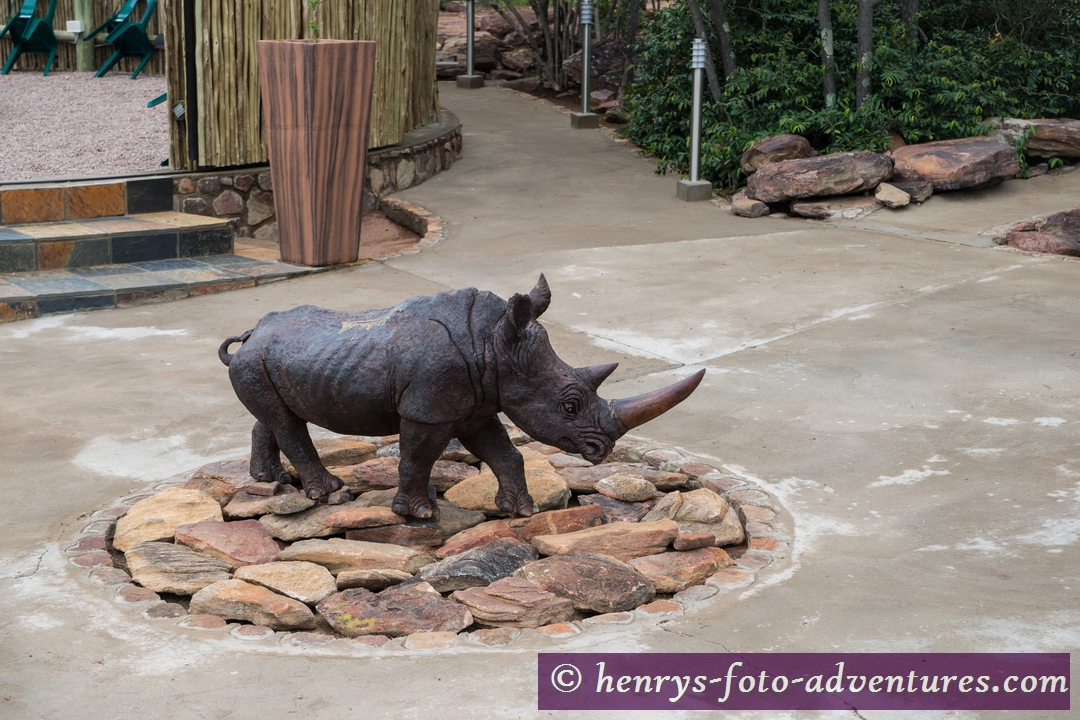 das Lodge-Rhino