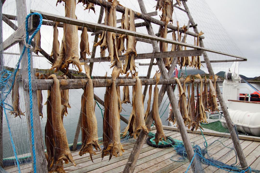 der berühmte norwegische Stockfisch