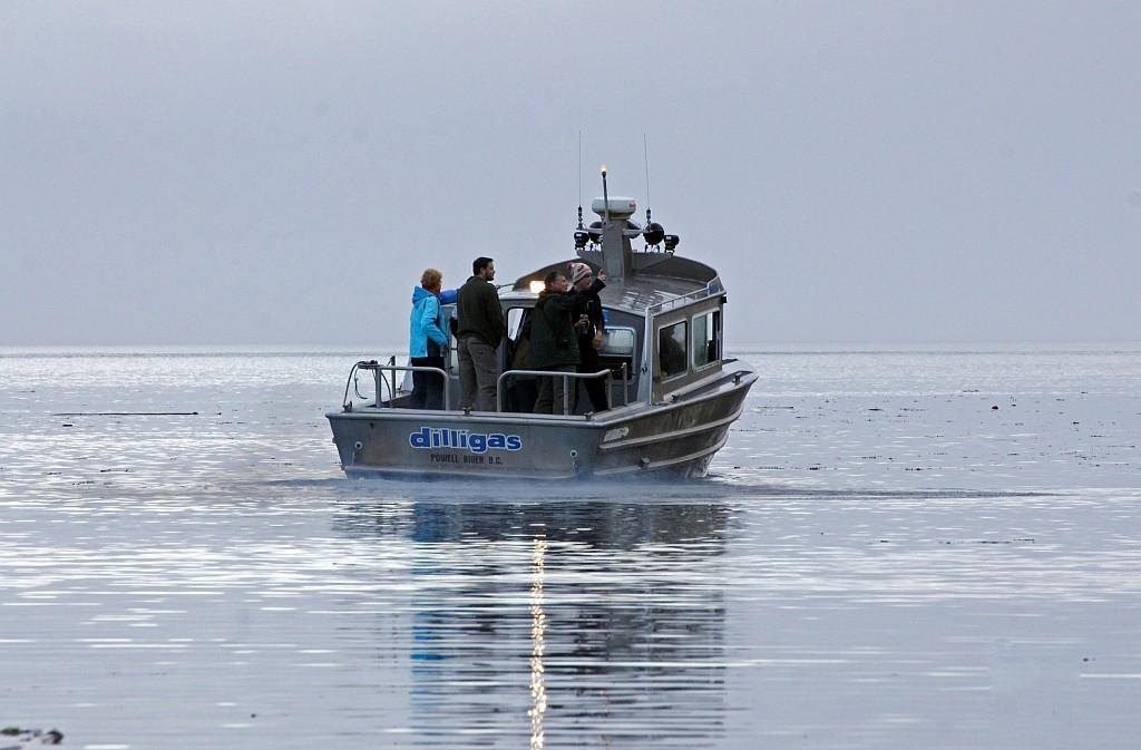 mit solchen Motorbooten fahren wir in den Knight Inlet