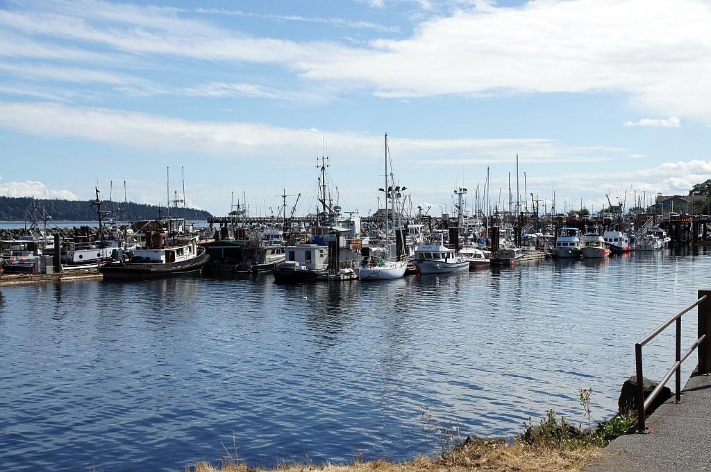 einen netten Yacht-Hafen