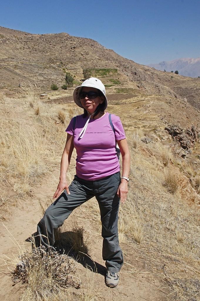 Molli, unsere Wader- und Reiseführerin hier