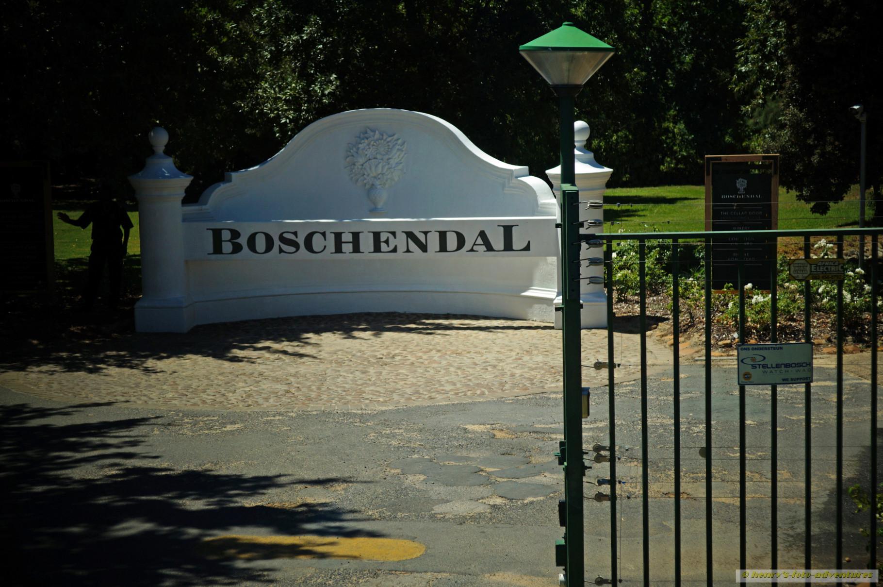Im Weingut Boschendal