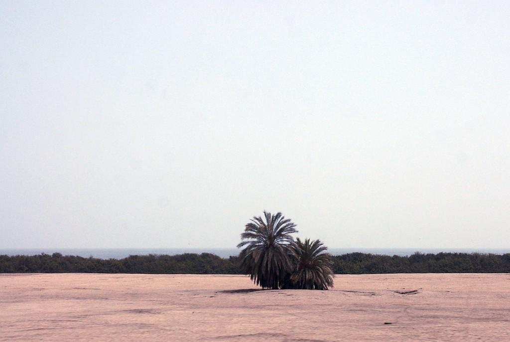 vom Meer wieder zurück un die Wüste