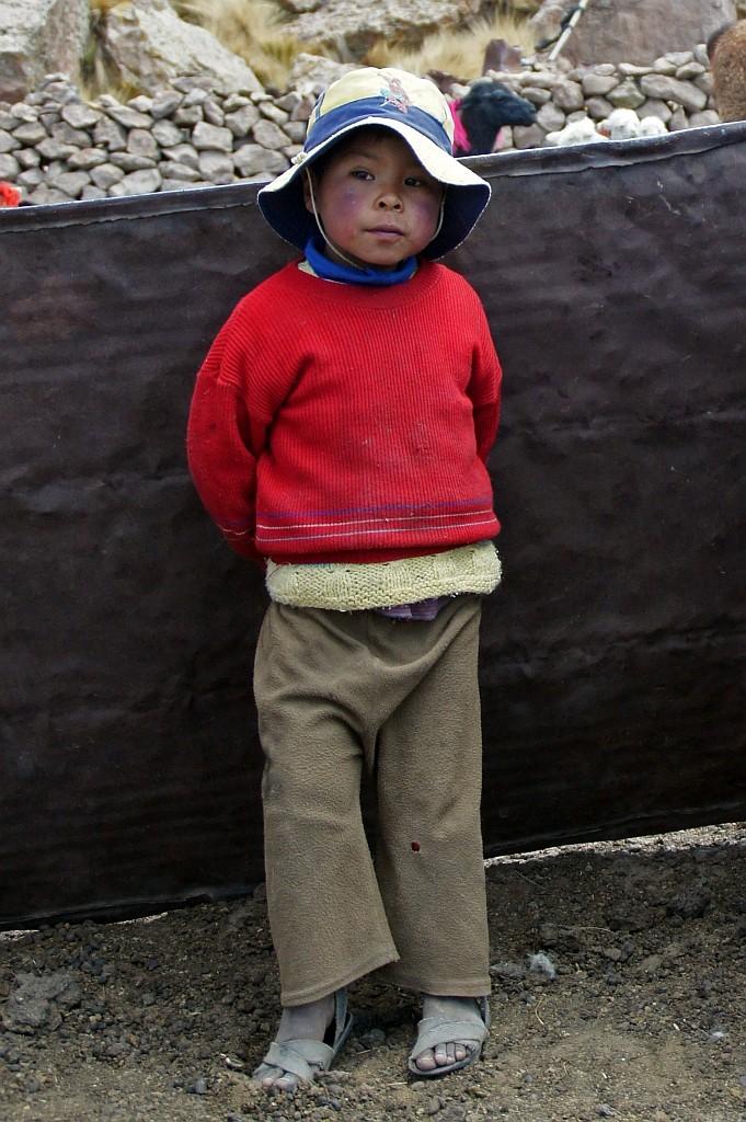 Kind eines Alpaka Züchters