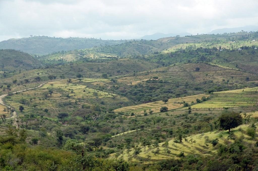 eine sanfte Hügellandschaft