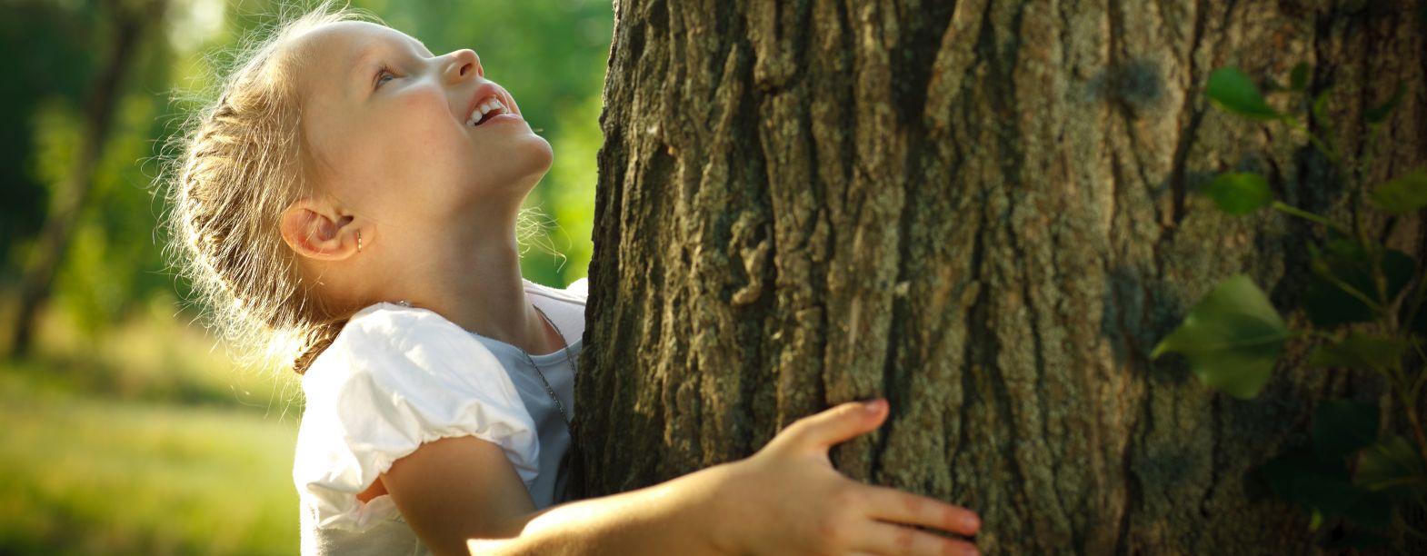 Unsere Leistungen - werden Sie Mitglied der Forstkammer!