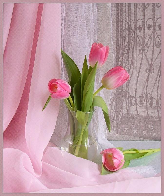 Открытка первый весенний день для женщины нежная, пожеланием