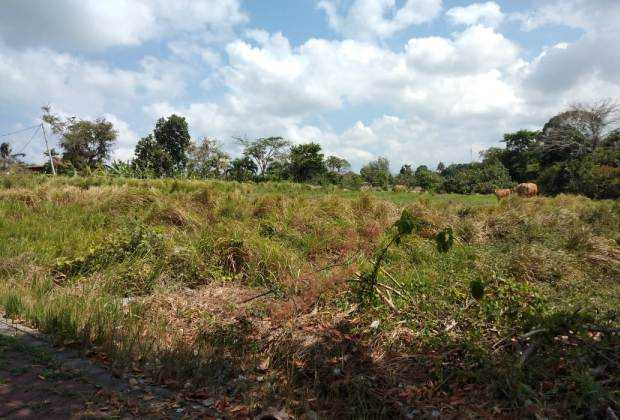 Pererenan land for sale
