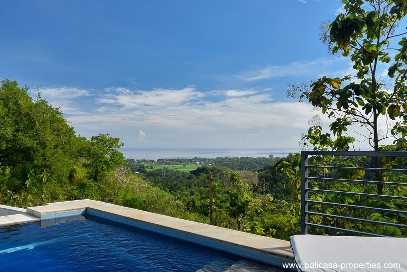 Lovina villa for sale