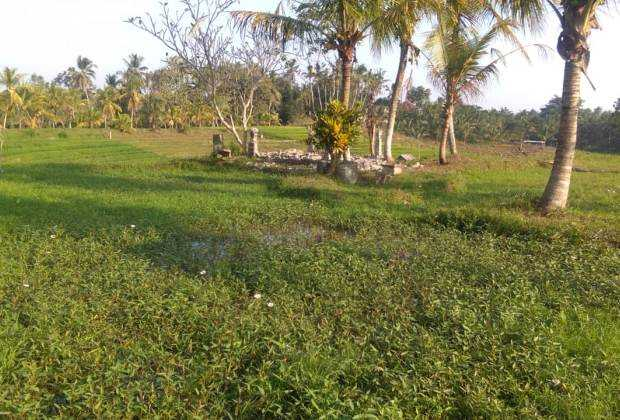 Gunung Salak land for sale