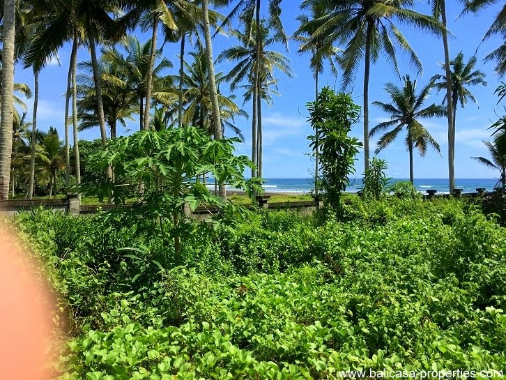 Beachfront land for sale