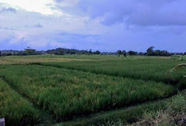 Yeh Gangga land for sale