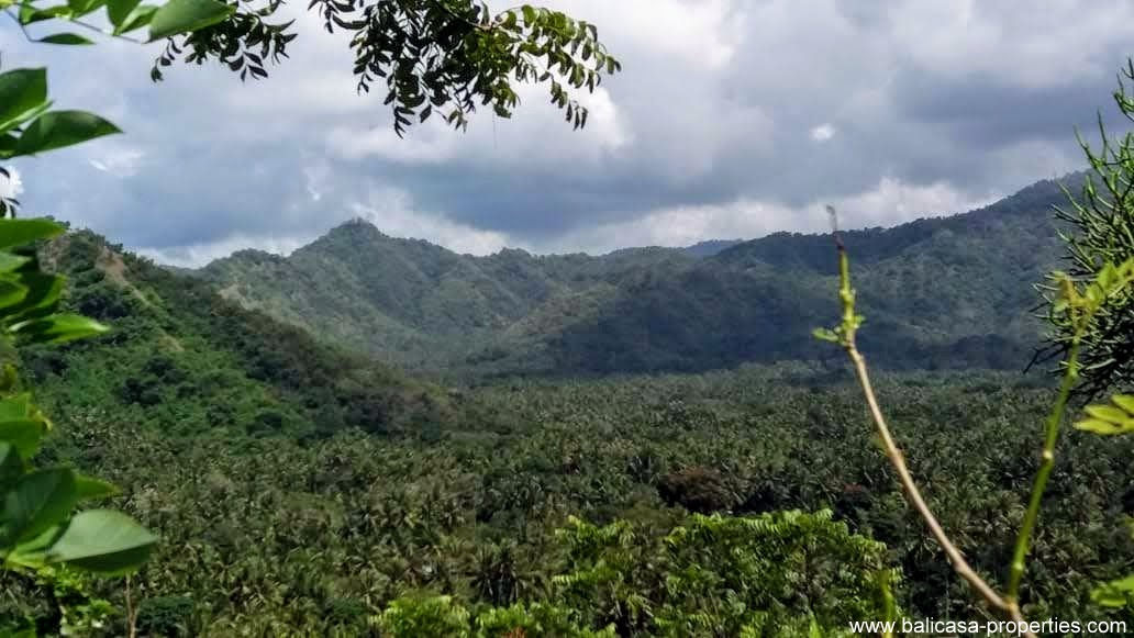 Land for sale in East Bali near Padang Bai