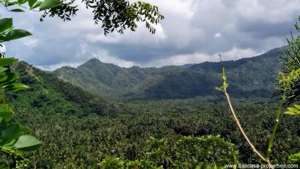 Land for sale in East Bali near Padang Bai