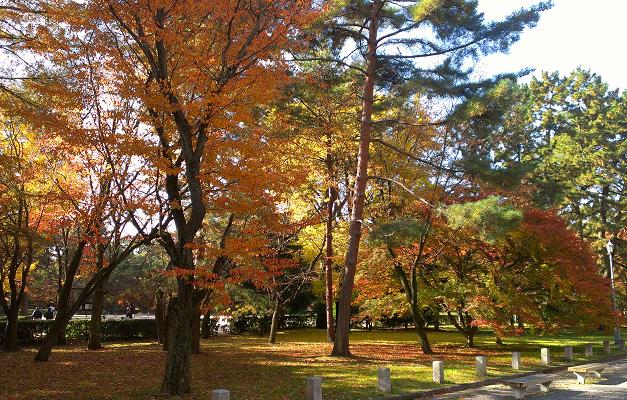 2013年11月の京都御苑の紅葉2